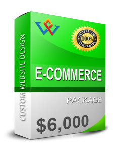 E-Commerce Web Design Cost
